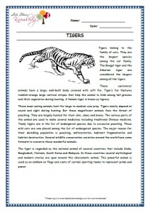 11 tigers grade 3 comprehension worksheet