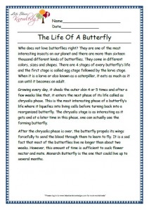 5 the life of a butterfly grade 3 comprehension worksheet