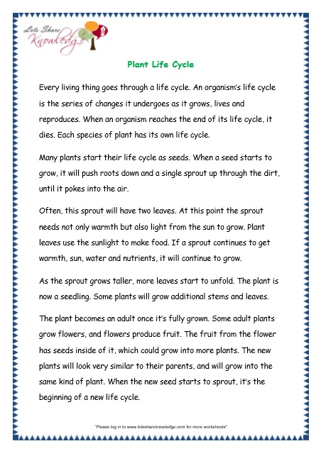 Comprehensions for grade 3 ages 7 9 worksheets passage 15 page 1 passage worksheet ibookread Read Online