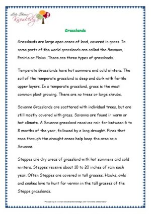Comprehensions for Grade 3 (Ages 7 - 9) Worksheets Passage 32