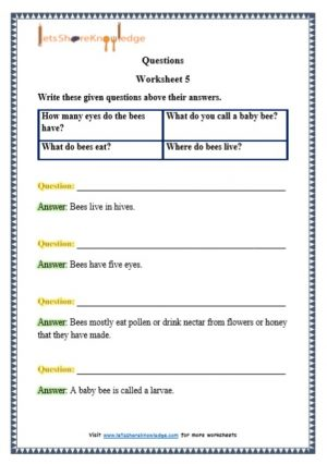 grade 1 questions grammar printable worksheets